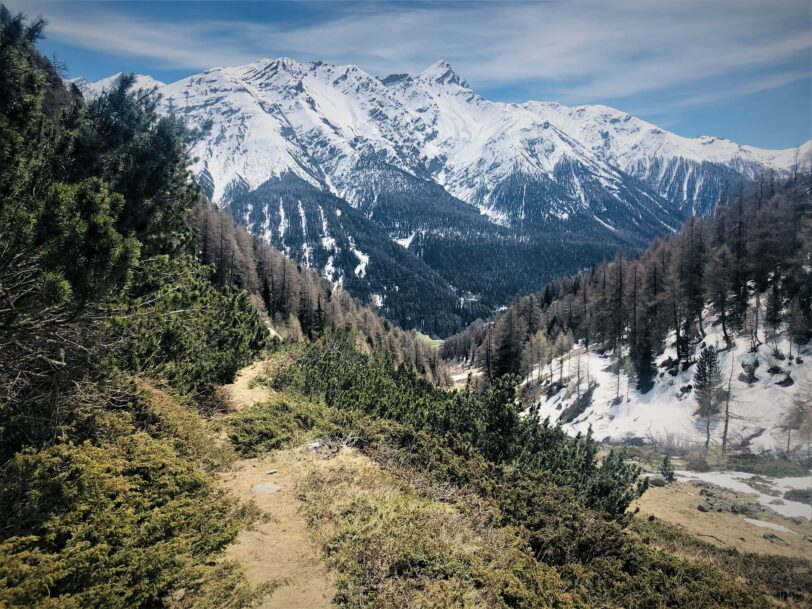 Biketour Alp Braul, Trail abwärts